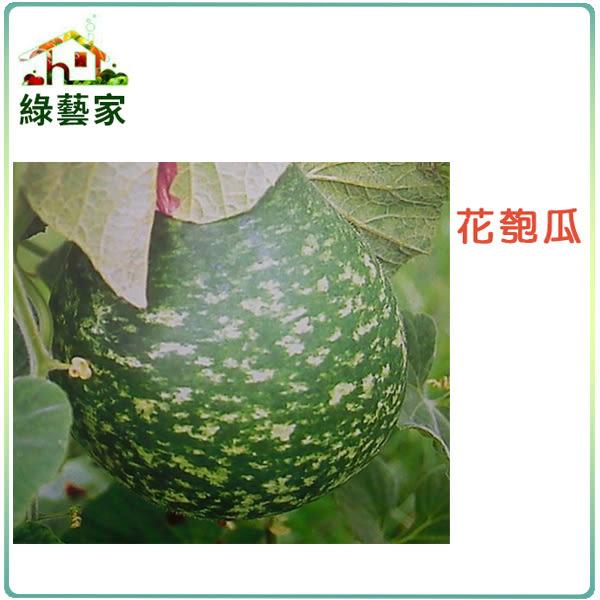 【綠藝家】大包裝G13.花匏瓜種子150顆