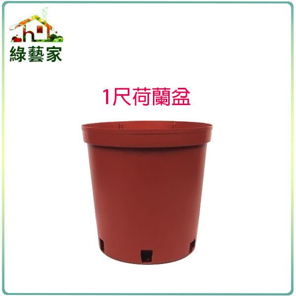 【綠藝家】1尺荷蘭盆(栽培盆)5個/組