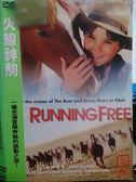 挖寶二手片-K12-075-正版DVD*電影【火線神駒】-一場充滿冒險奔馳的感動之旅