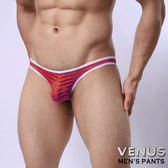 情趣內褲 性感丁字褲 情趣用品 角色扮演 內褲 同志 猛男 VENUS 低腰性感 透明 囊袋款 丁字褲 紅