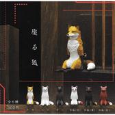 全套6款【日本正版】坐姿狐 扭蛋 轉蛋 不可思議動物 KITAN 奇譚 - 302377