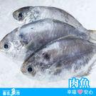 【台北魚市】  肉魚(2尾裝)  200g±10%