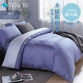 Minis 100%純天絲40支 床包兩用被套四件組 雙人 晚云