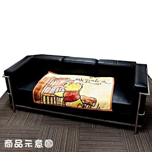 DISNEY 小熊維尼絨毛毯S(書櫃)★funbox★丸真_RS65845