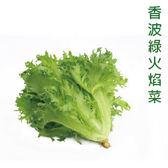 預購【安心蔬食】 水耕蔬菜-香波綠火焰菜(150g)