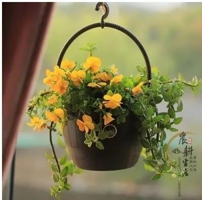 全館85折愛麗思BARREL吊缽7號 啤酒桶吊盆 可種花可當裝飾愛麗絲掛盆花盆