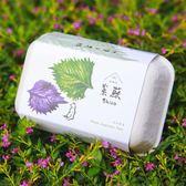 【青菜笠】雞蛋環保植栽盒-紫蘇