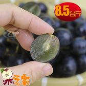 【果之家】苗栗卓蘭特級巨峰葡萄8.5台斤裝