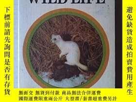 二手書博民逛書店GUIDE罕見TO WATCHING WILD LIFEY362