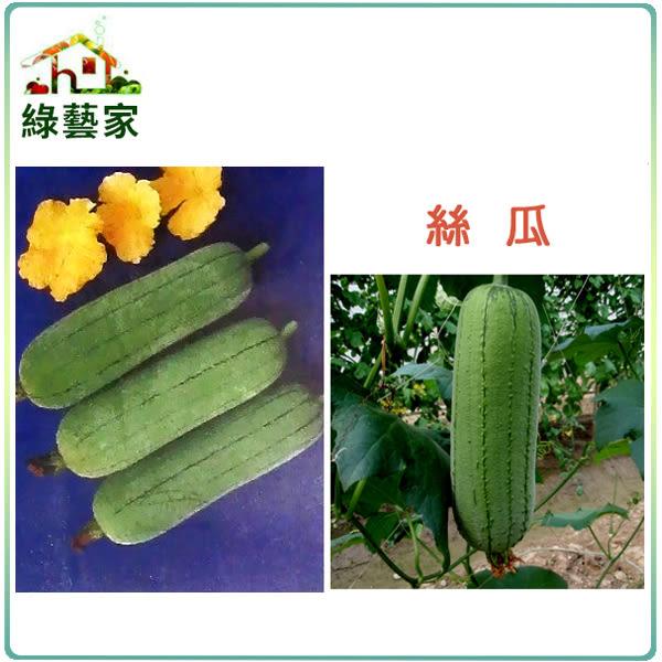 【綠藝家】大包裝G15.絲瓜種子300顆