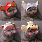 貓咪帽子生日頭飾裝扮泰迪狗狗搞怪可愛搞笑寵物飾品【小獅子】