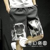 五分褲-夏季休閒褲印花短褲男透氣沙灘運動褲寬鬆大碼五分褲韓版潮流-奇幻樂園
