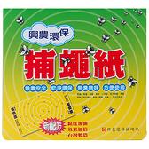 【奇奇文具】興農 環保捕蠅紙展開 24.5x45cm 5片/包