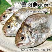 【海肉管家】新鮮野生肉魚/肉鯽仔X2尾(120g土10%尾 2尾/包)
