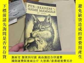 二手書博民逛書店英文原版罕見fur-bearers and game mamma