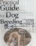 二手書R2YBb《Practical Guide to Dog Breeding
