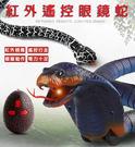 遙控響尾蛇 新款整蠱玩具 新奇特玩具 遙控眼鏡蛇 搞怪玩具【H80830】