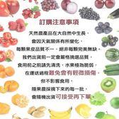 【WANG-全省免運費】超值優惠每周水果新鮮配