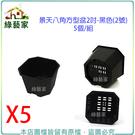 【綠藝家】景天八角方型盆2吋-黑色(2號)5個/組