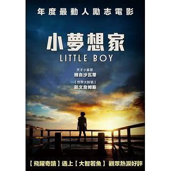 小夢想家 DVD (音樂影片購)