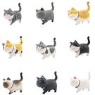 一代自愈系可愛貓咪公仔 溫暖系列 日本貓咪 圓滾 憨實 貓咪 手辦韓版創意造景公仔