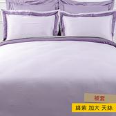 HOLA 雅緻天絲素色被套 加大 絳紫