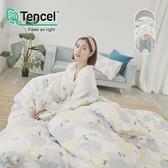 《多款任選》絲柔親膚奧地利TENCEL天絲3.5尺單人床包+枕套二件組(不含被套)台灣製/萊賽爾Lyocell