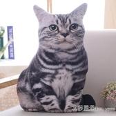 仿真3D貓咪抱枕公仔毛絨玩具抱著睡覺的娃娃喵星人搞怪床頭靠墊 【快速出貨】