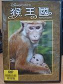 挖寶二手片-B22-029-正版DVD*電影【猴王國/Monkey Kingdom】-迪士尼