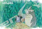 【拼圖總動員 PUZZLE STORY】水彩畫風-秘密的入口 日本進口拼圖/Ensky/龍貓/300P