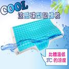 HO KANG  COOL涼感碟型記憶枕...