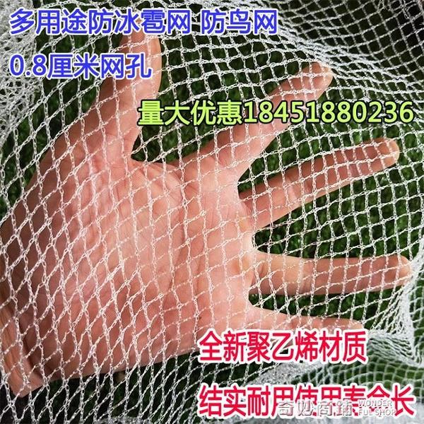 防蝗蟲網防鳥網葡萄果園櫻桃樹網魚塘冰雹網葡萄養殖網檔雜物防護 奇妙商鋪