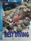 影音專賣店-O08-024-正版DVD*電影【浪漫海洋風情 菲律賓、密克羅尼亞】-
