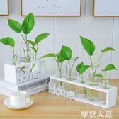 水培小花瓶創意玻璃綠蘿透明小清新水養植物桌面裝飾擺件客廳插花『摩登大道』