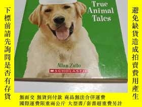 二手書博民逛書店The罕見Dog who Saved Christmas: And Other True Animal Tales