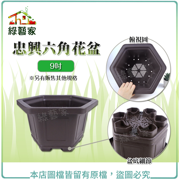 【綠藝家】忠興六角花盆 9吋(加厚材質)