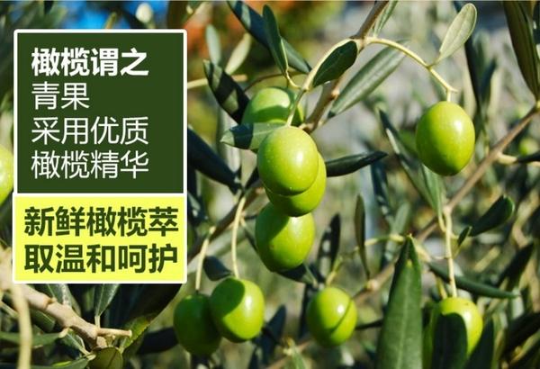 按摩精油 橄榄油護膚1000ML身體按摩油孕婦妊辰紋推背精油潤膚油