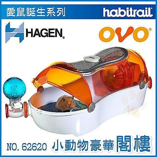 *WANG*加拿大Hagen赫根《OVO小動物鼠閣樓》Habitrail寵物鼠誕生系列NO.62620