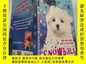 二手書博民逛書店puppy罕見place snowball 小狗廣場雪球..,Y200392