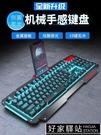 背光游戲電腦臺式家用發光機械手感筆電外接USB有線鍵盤鼠標套裝防水靜音辦公專用打字電競