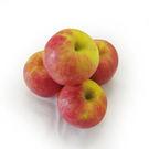 【陽光農業】進口蘋果4入(180g±5%/粒)