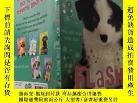 二手書博民逛書店Puppy罕見place flash:小狗廣場閃光燈 ..Y200392