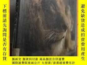 二手書博民逛書店英文書罕見encyclopedia of mammals哺乳動物百科全書Y16354 請見圖片 請見圖片