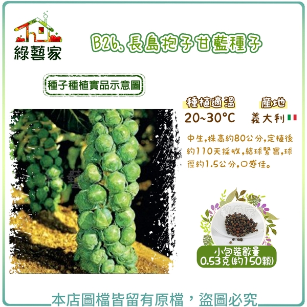 【綠藝家】B26.長島抱子甘藍種子0.53克 (約150顆)