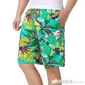 夏季新款男士純棉沙灘褲加肥加大碼五分褲寬鬆大褲衩鬆緊褲花短褲 檸檬衣捨