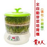 【貴夫人】全自動養生芽菜培育機(豆芽機、蔬菜機)