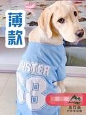 薄款大狗狗衣服金毛拉布拉多中型大型犬寵物運動T恤背心裝【步行者戶外生活館】