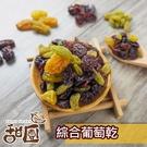 黃金綜合葡萄乾 隨身包 綜合葡萄 蔓越莓果乾 懶人大補帖 【甜園小舖】