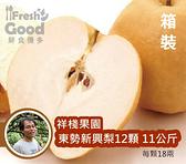 【 鮮食優多】祥棧果園 東勢新興梨12顆/箱裝(每顆18兩,共11公斤)