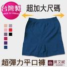 女性 超彈力 超加大尺碼舒適平口內褲 安全褲 內搭褲 孕媽咪也適穿 台灣製no.692-席艾妮SHIANEY